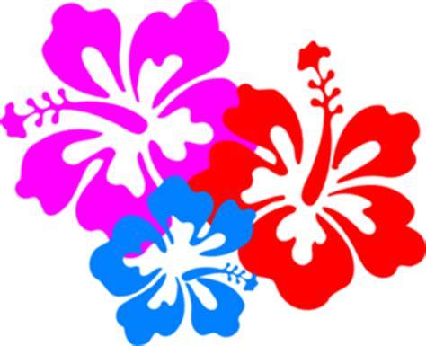 Purple Hibiscus Symbolism Essay